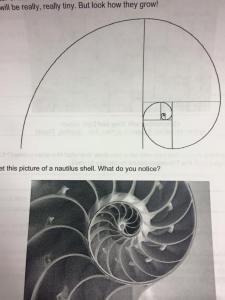 fibonacci 3